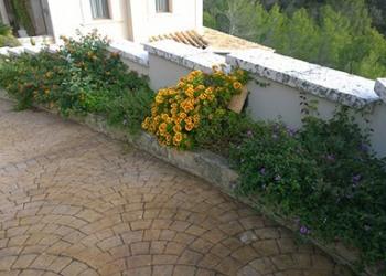 Garten-Bau-Pflege-28