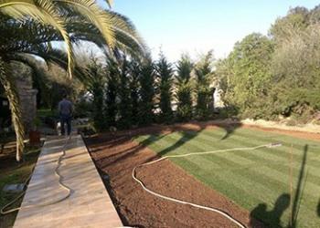Garten-Bau-Pflege-8